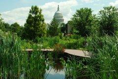 美国国立植物园:首都最美景点
