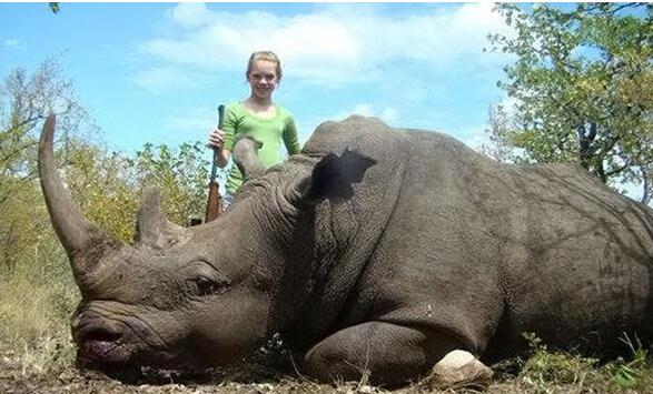 少年发射杀动物图片惹众怒