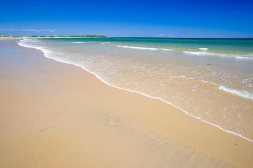 home 美国头条 社会 > > 正文       在海滩公园(ocean
